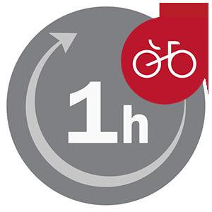 BikeKia 1 hodina jazdy